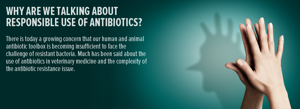 Why are we talking about responsible use of antibiotics?
